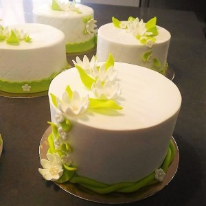 Cake Design basic techniques